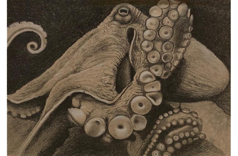 """Artwork """"The Octopus's Garden, Harold"""" by Nancy Deaner"""
