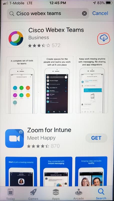 Screen shot showing Download button
