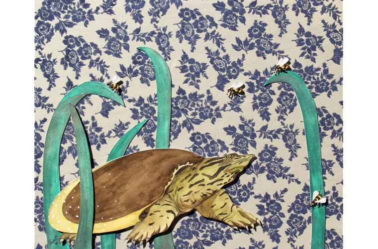 "Artwork ""Soft Shells World"" by Myranda Bair"