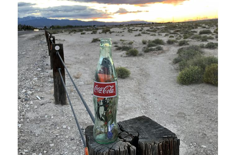"Lilia Todd Artwork ""Bottle Map"""