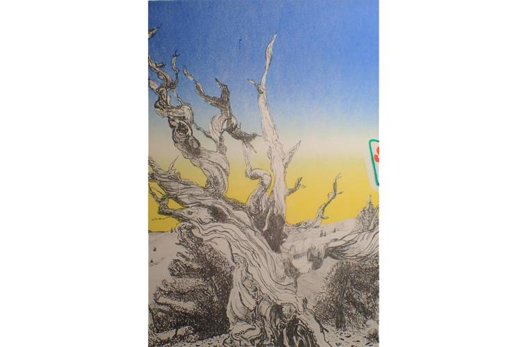 "Artwork ""Sinclair"" by Daryl DePry"