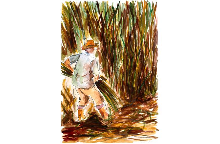 "Artwork ""Collecting Sugar Cane/Pumping Oil—Venezuela"" by Alfonso Lirani"