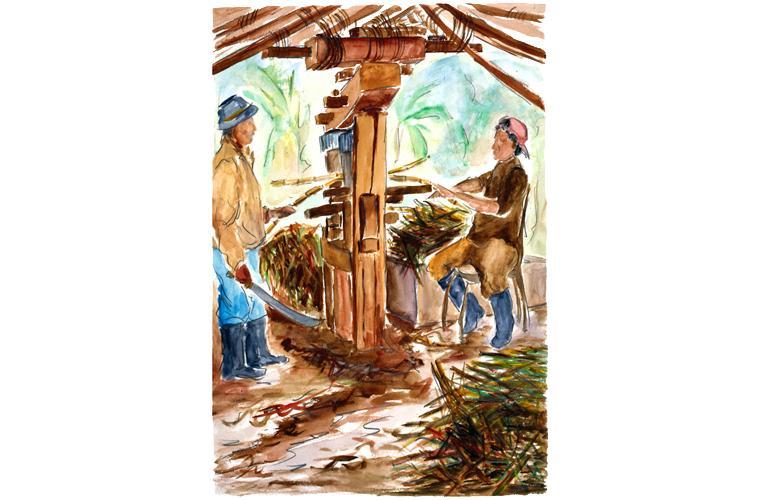 "Artwork ""Old Style Squeezing Sugar Cane into Holding Tank—Venezuela"" by Alfonso Lirani"